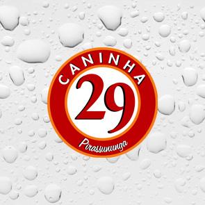 CANINHA 29