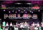 New Pallapa Live in Binuang Kalsel 2012