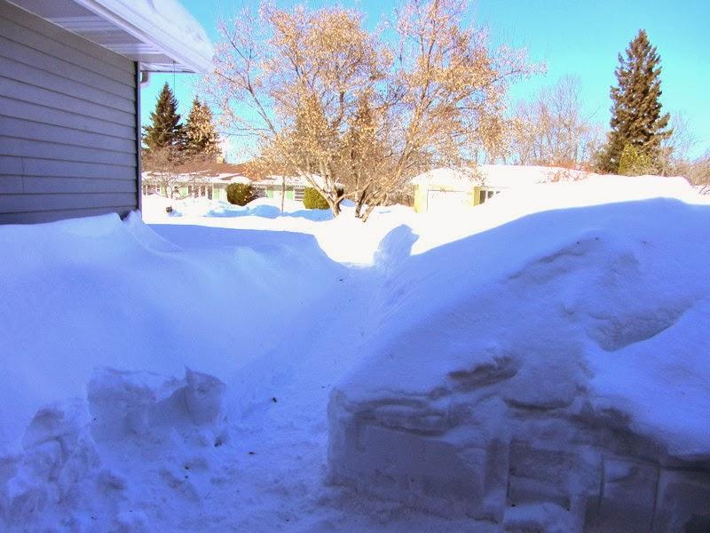 Northern Minnesota Snow www.organizedclutterqueen.blogspot.com