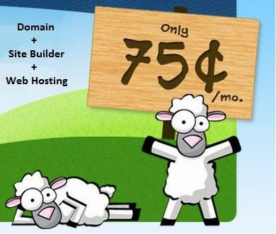Order and get very great webhosting service for only $9 for a year with a free domain width Fatcow