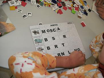 Atividades de montar palavras com o alfabeto móvel