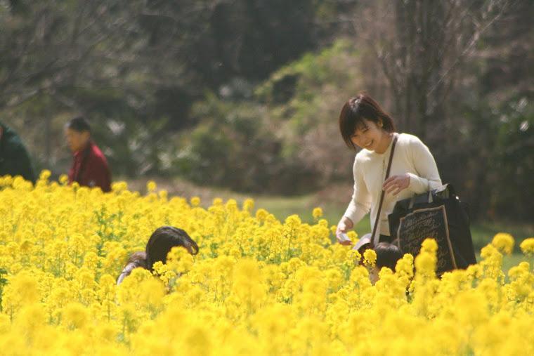 Tokyo Hama-Rikyu Garden