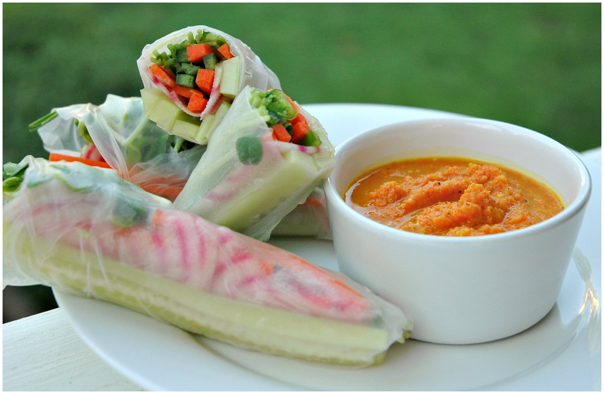 Summer Rolls with Carrot-Ginger Dipping Sauce | Small Packages Knits