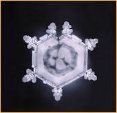 Szeretet-vízkristály
