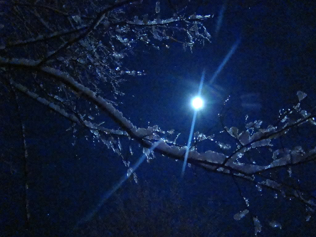 an analysis of samuel taylor coleridges poem frost at midnight Samuel taylor coleridge in the poem frost at midnight looks into frost at midnight by samuel taylor poem, this paper provides an analysis of how the.