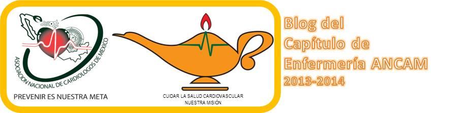 CAPITULO DE ENFERMERIA ANCAM