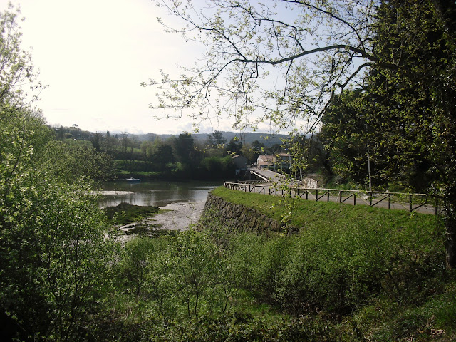 Ria La Rabia en Parque Natural de Oyambre
