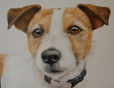 Jack Russell Pet Portrait Oil on Canvas