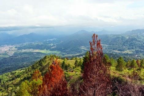 Wisata Gunung Sesean Toraja Utara
