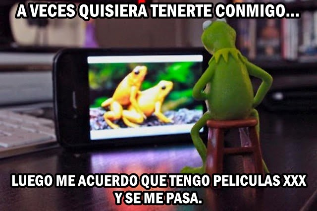 Meme chistoso de la rana rene