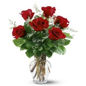 Order 6 Valentine Roses