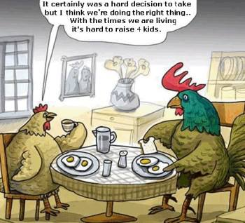 Funny hens dussion