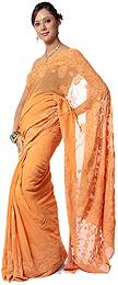 Models in Lucknowi Chikan  Saree