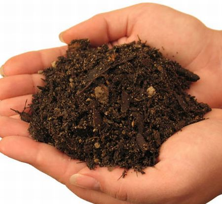 How to choose soil mixes for bonsai bonsaikey for What is soil a mixture of