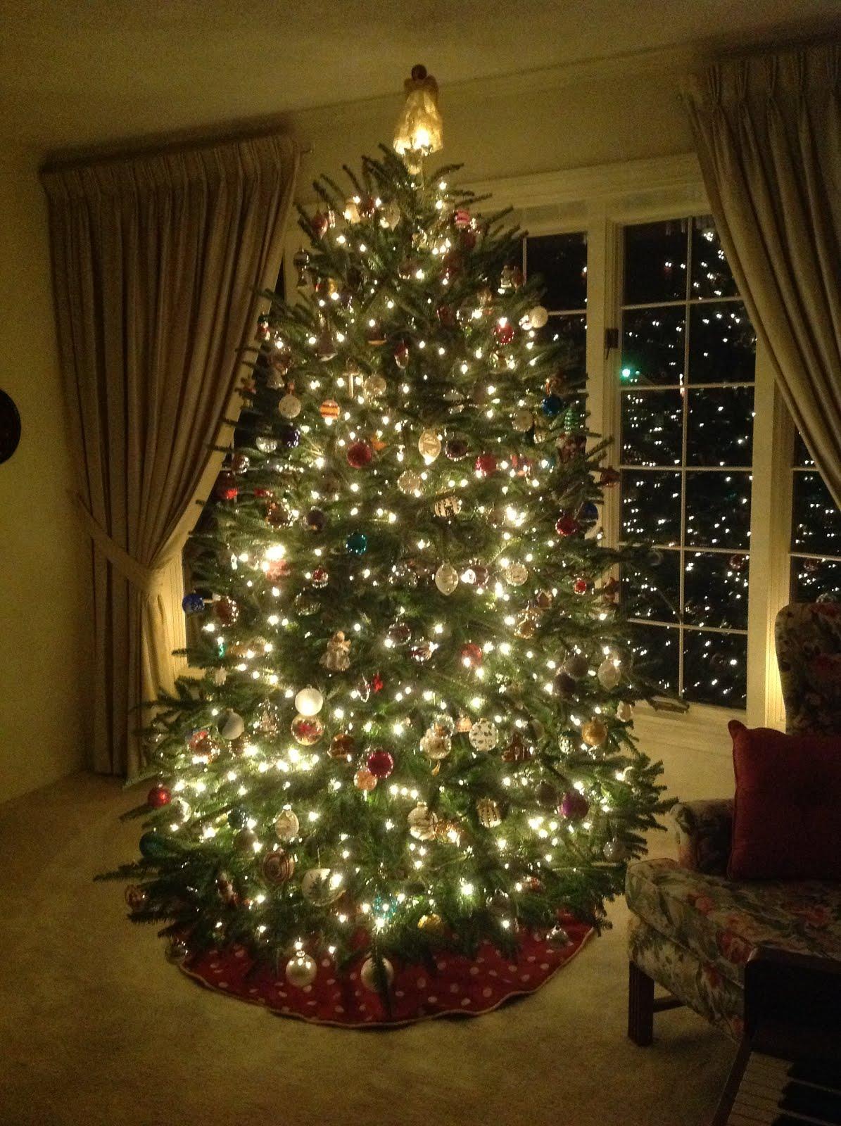 amerika blog amerikablog toller weihnachtsbaum in south. Black Bedroom Furniture Sets. Home Design Ideas
