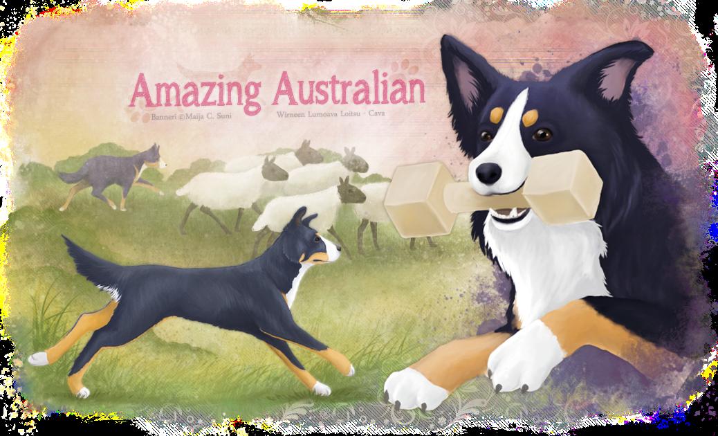 Amazing Australian