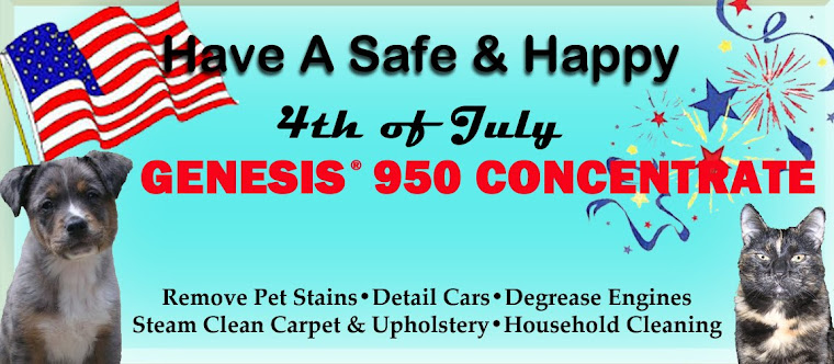 Remove Stains Pet Stains And Odors. Make Your Carpet Look Professionally Cleaned