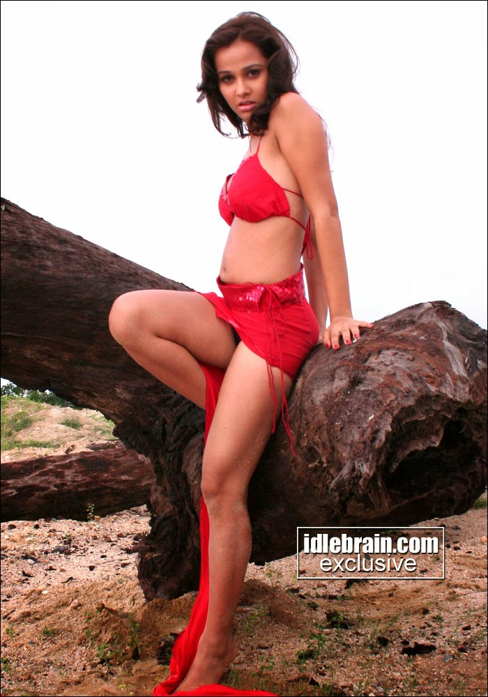 Nisha Kothari navel and boobs show photos