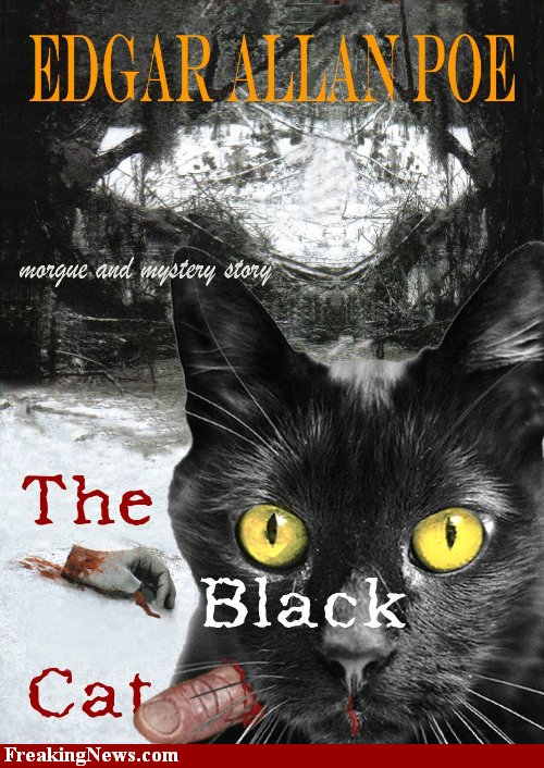 the black cat analysis atmosphere and tone The theme of the story the black cat is that human life is such a different one for all & it is that no one can reach up to the highest point unless they face all their hurdles in life and succeed in it the black cat was a horror story by edgar allan poe it revolvedaround a man who was.