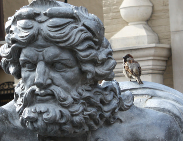 Neptune, Poseidon, sparrow, small, Greek, fountain, plaza, hubris, poetry, bird, art, S. Myers, Sarah Myers
