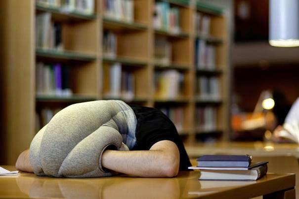 School Pillow
