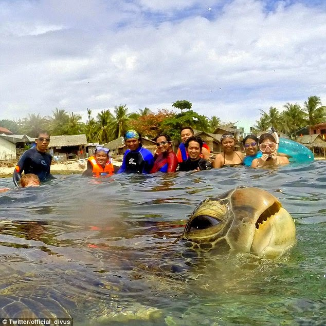 VIRAL Gambar Penyu Photobomb Sekumpulan Pelancong Di Filipina