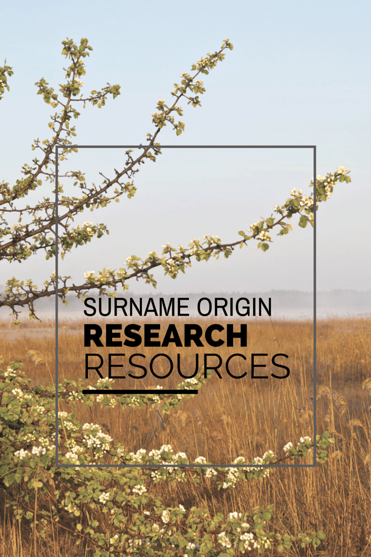 Surname Origin Research Resources Desperately Seeking Surnames