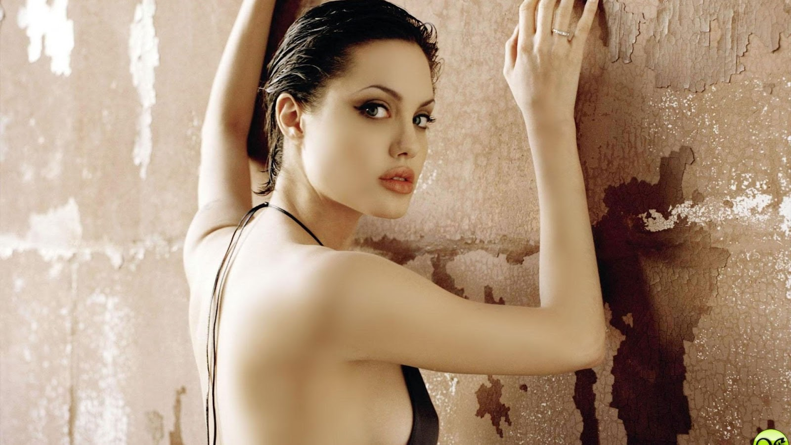 http://4.bp.blogspot.com/-MRNoSeTI2GE/TwRmD9YgmiI/AAAAAAAAD-Q/ykpqWiMHaC8/s1600/Angelina-Jolie--hot-sexy-actress-hollywood-star-pictures-wallpapers-widescreen-supermodel-photo-gallery-widescreen-wallpaper-latest-wallpapers-1920x1080.jpg