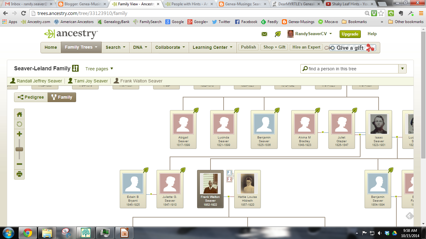 how to search for a tree on ancestry
