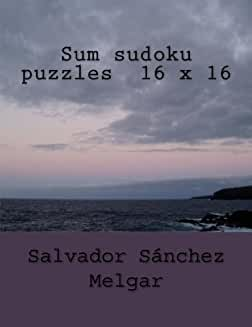 Sum Sudoku Puzzles 16X16