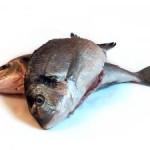 Resep Masak Ikan Gurame Goreng Tepung Saus Tiram