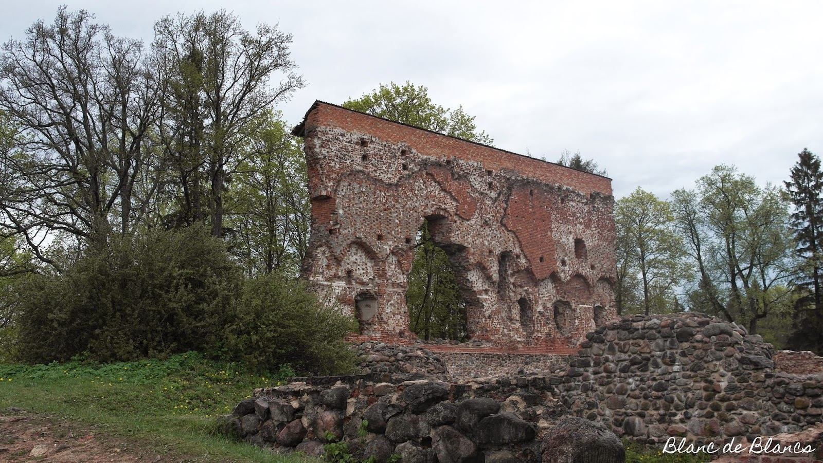 Viljandi linnanrauniot - www.blancdeblancs.fi