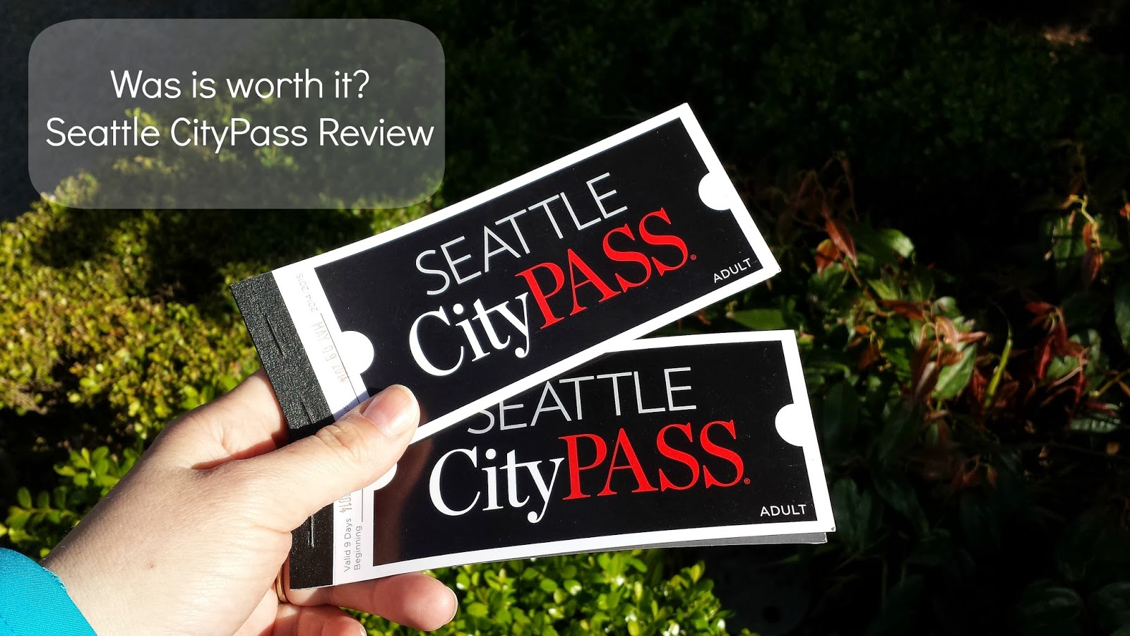 The Newest Vazquez Seattle Seattle Citypass Review Was It Worth It