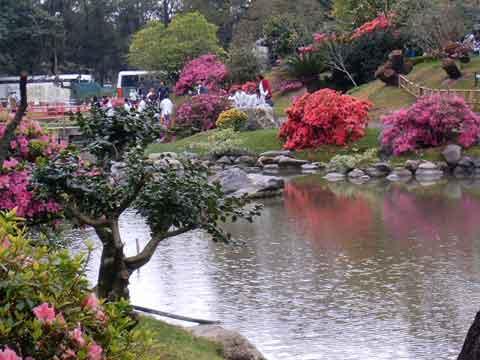 Taxi en buenos aires jardin japones buenos aires traslados ezeiza newbery - Fotos jardines japoneses ...