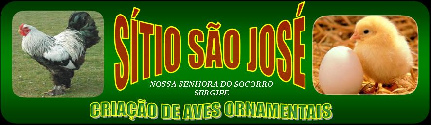 SÍTIO SÃO JOSÉ