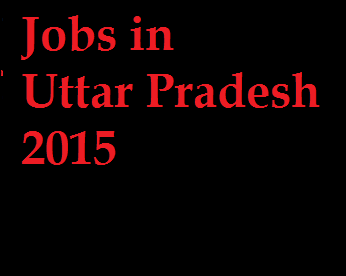 Latest Jobs in UP 2015