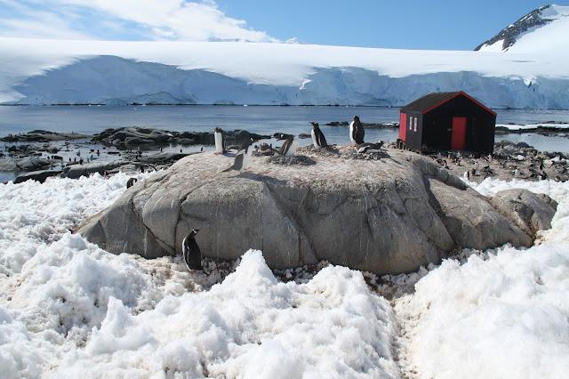 1000 amazing places 845 port lockroy antarctica for Port lockroy