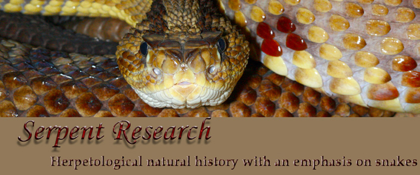 Serpent Research