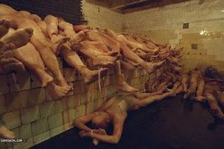 Pabrik Penjual Organ Tubuh Manusia