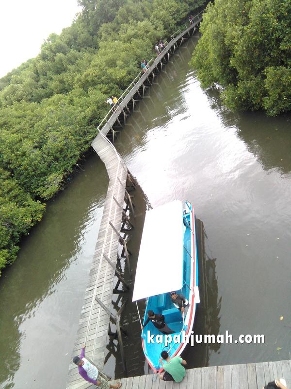 Hutan Mangrove Tahura Ngurah Rai