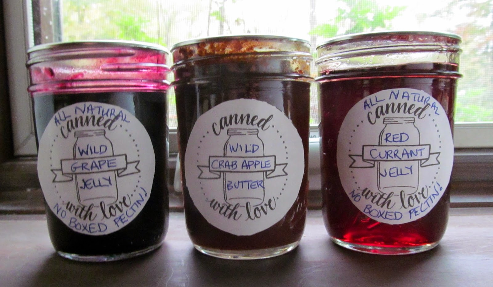 jam and jelly contest