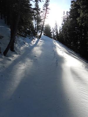 Wheeler Peak trail taos
