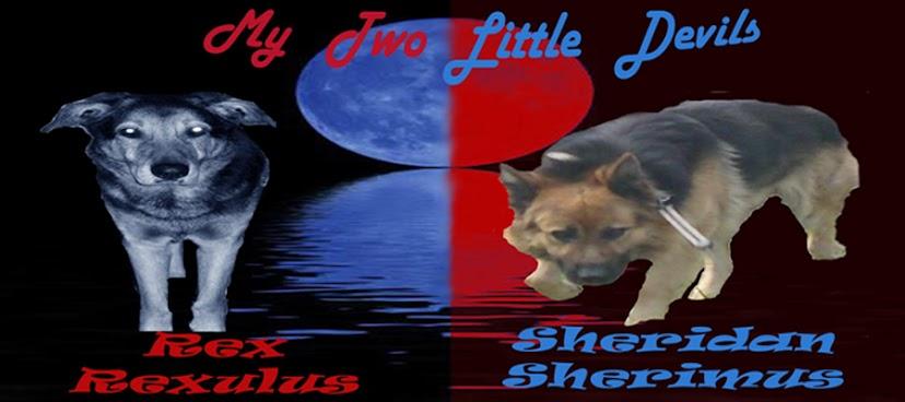 Rex & Sheridan - My Two Devils