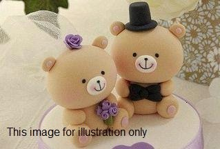 Animal Wedding Toppers (3 sets) Making Class