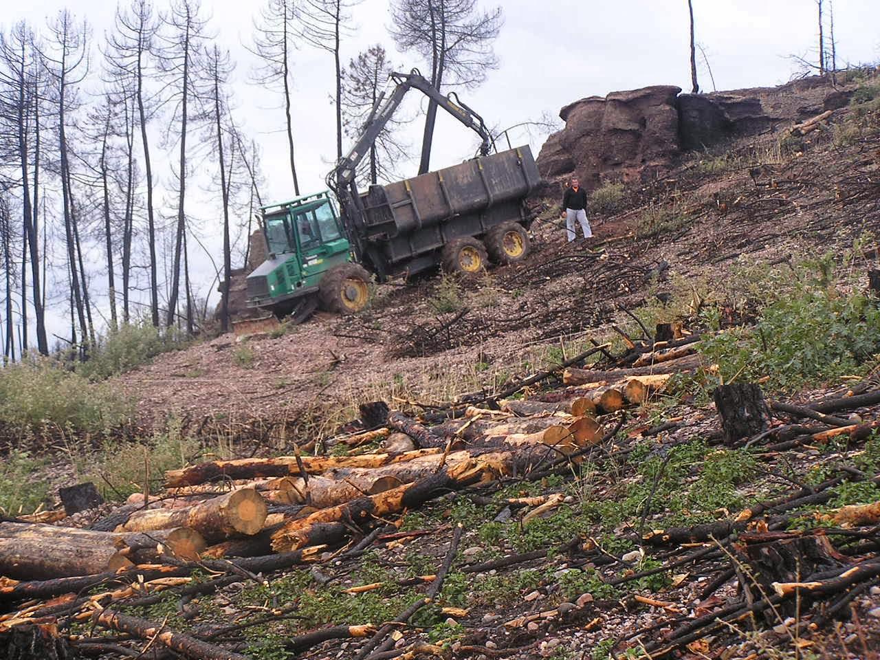 Biomasa y prevención