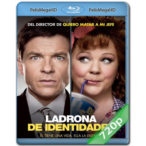 LADRONA DE IDENTIDADES (2013) 720P HD MKV ESPAÑOL LATINO