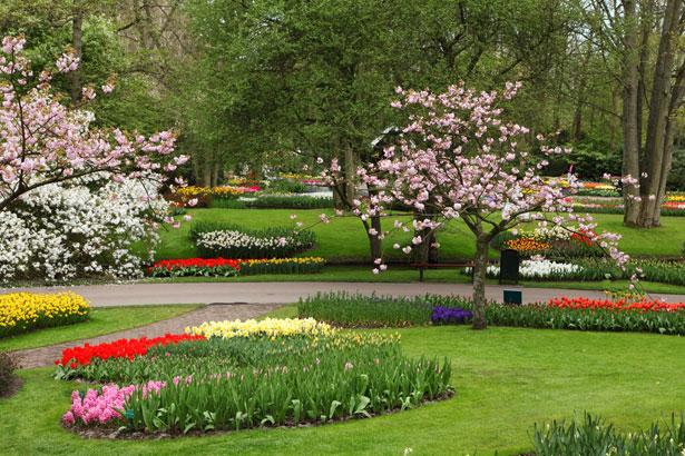 Fun Flower Garden : Funny wallpapers flower garden gardens