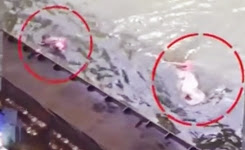 Auto driver jumps into Krishna river to save mother and child in Vijayawada