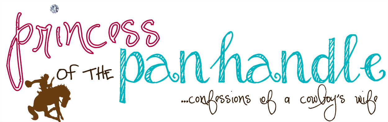 Princess of the Panhandle; Confessions of a Cowboys Wife