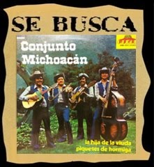 CONJUNTO MICHOACAN